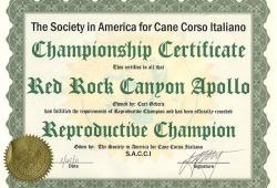 SACCI CH of Reproduction Apollo
