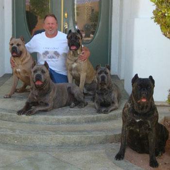 Red Rock Cane Corso Family