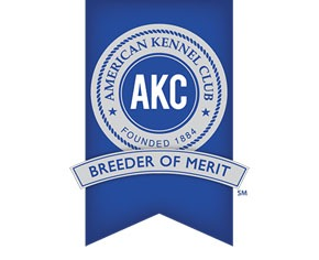 AKC Breeder of Merit Badge