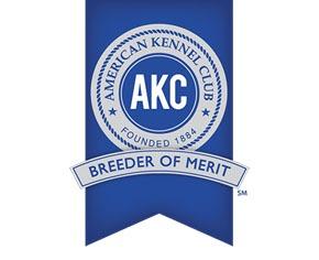 AKC Breeder of Merit Badge